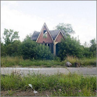 Feral Houses 2