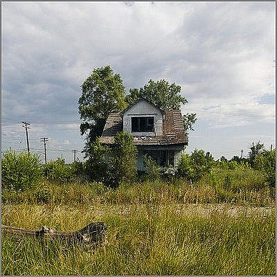Feral Houses 0