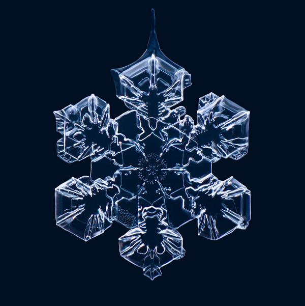 Macro Photographs of Snowflakes by Matthias Lenke