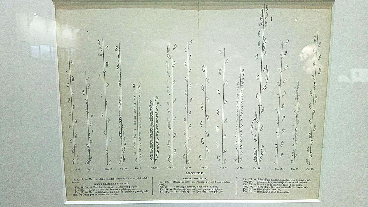 St Louis Church (Salpetriere hospital) Charcot / Quai Branly TATOUEURS, TATOUÉS exhibitions