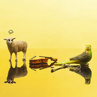 """Stephen O'MALLEY / création de """"Gruidés"""" ONCEIM (orchestre - FR) @ FESTIVAL CRAK #3 26 SEP Paris"""